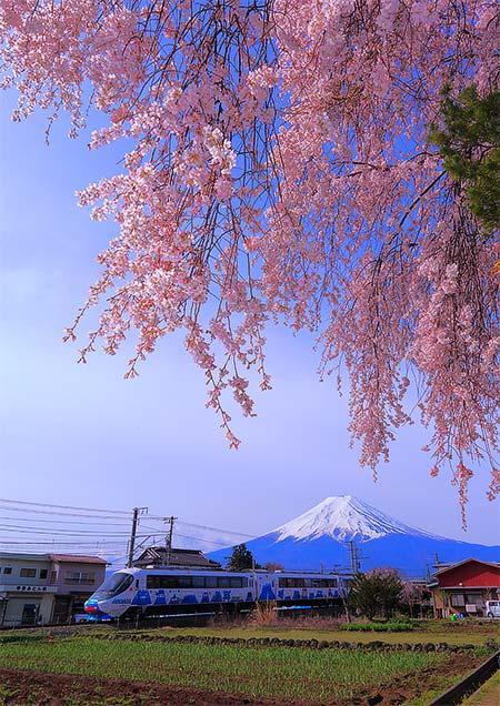 「第9回 富士急電車フォトコンテスト」作品募集