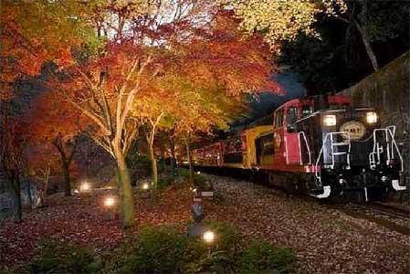 嵯峨野観光鉄道で紅葉ライトアップと臨時列車の運転