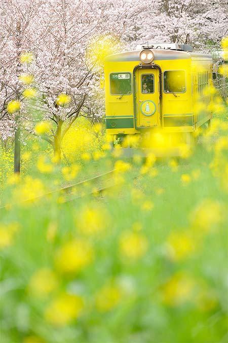 写真展「鉄道でめぐる四季」開催