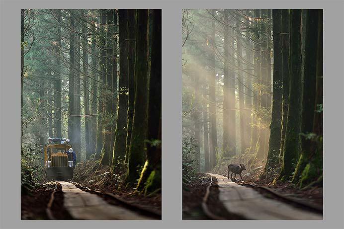 日本鉄道写真作家協会30周年記念写真展「&」開催