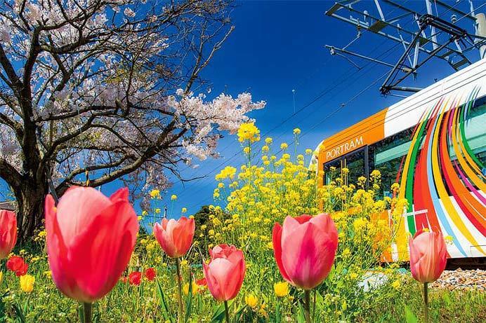 大阪で「2019 第43回 鉄道ファン/キヤノン フォトコンテスト」ギャラリー展示