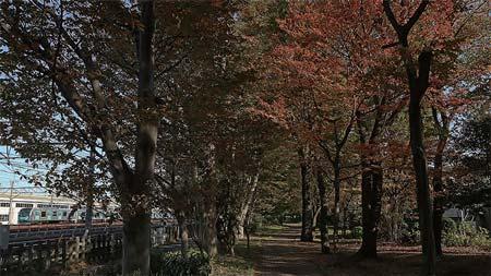 東京の鉄道 16.多摩東部