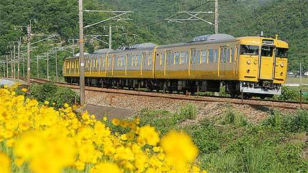 岡山電車区115系A03編成が黄色に