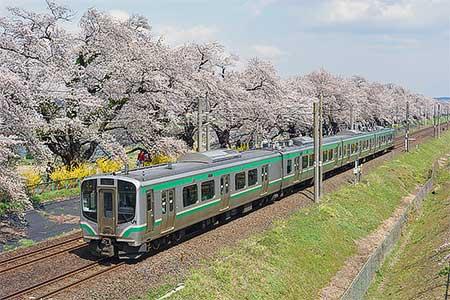 東北本線大河原—船岡間で桜開花にあわせた減速運転