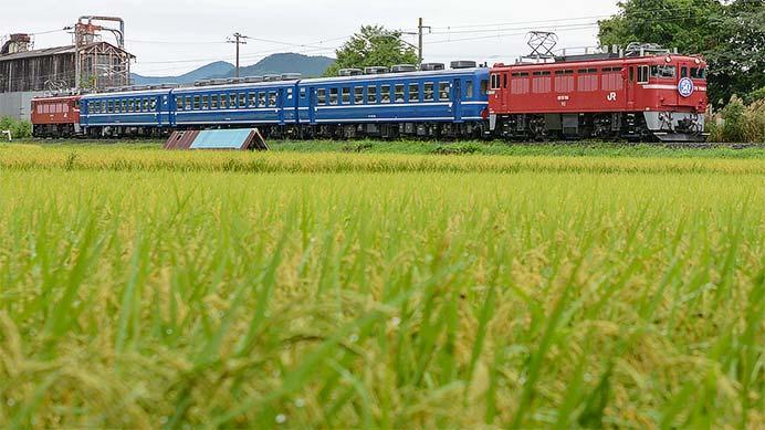 仙山線でED75+12系の団臨運転