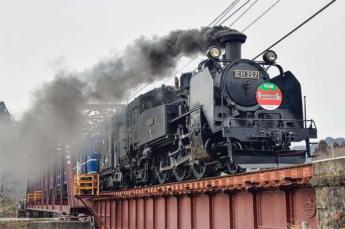 C11 207・DE10 1099に「Strawberry Locomotive 大樹」ヘッドマーク