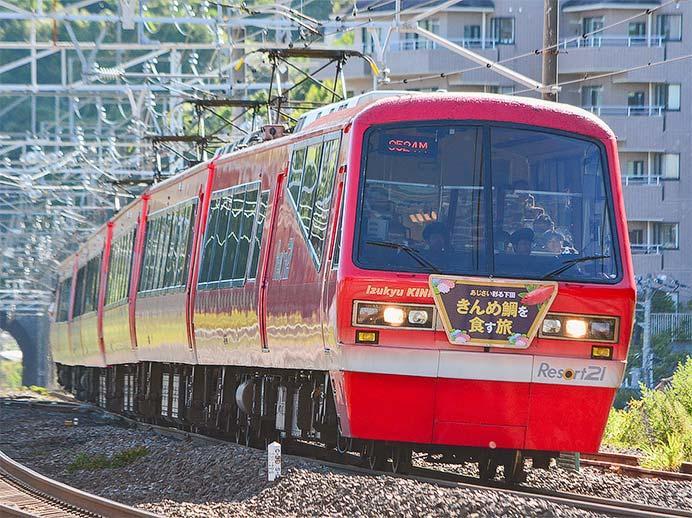 伊豆急2100系「Izukyu KINME Train」による団臨運転