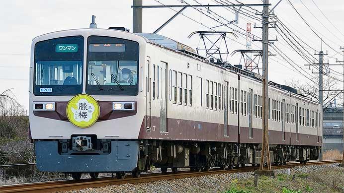 """秩父鉄道で""""急行ロウバイ号""""運転"""