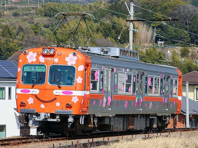 岳南電車で「さくら電車」運転