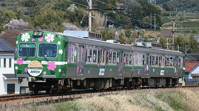 岳南電車で「ジヤトコ芝桜トレイン」を運転