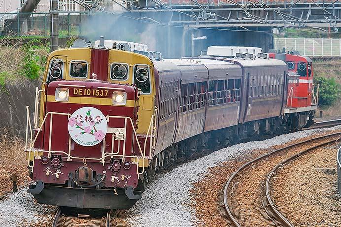 わたらせ渓谷鉄道で「花桃号」が運転される