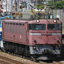 EF66 45とEF66 49が南福井へ