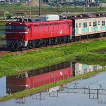 203系マト66編成,新潟貨物ターミナルへ配給輸送される