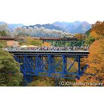 秩父鉄道,SL運行30周年記念CMを作成