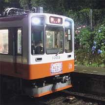 箱根登山鉄道でアジサイの夜間ライトアップが始まる