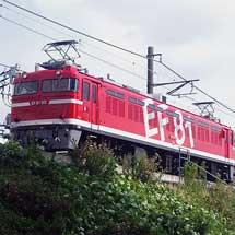EF81 95がキヤE193系をけん引