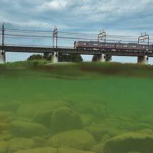 8月16日〜28日京王聖蹟桜ヶ丘ショッピングセンターで写真展「京王線と多摩をゆく電車たち」開催