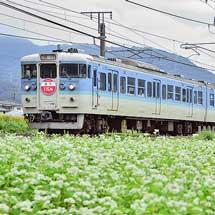 """しなの鉄道で『急行""""115系""""号』運転"""