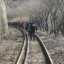 「通常は列車が走る 嵯峨野観光鉄道トロッコ線路ウォーク」参加者募集