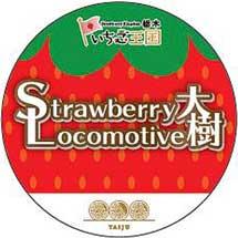 3月9日〜11日東武「Strawberry Locomotive 大樹」を運転