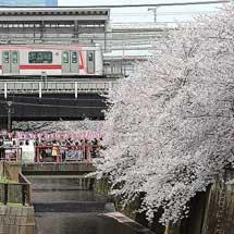 東京の鉄道8.目黒区