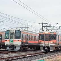 東海道本線で313系8000番台の団臨が運転される