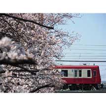 2月21日〜3月1日鉄道写真展「TRAIN×KANAGAWA」開催