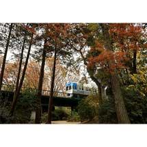 8月13日〜25日京王聖蹟桜ヶ丘ショッピングセンターで写真展「京王電車と仲間たち」開催