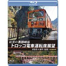 アネック,「紅葉の黒部峡谷トロッコ電車運転席展望」を8月21日に発売