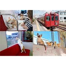 4月3日〜6月3日養老鉄道,「WEBねこカフェ列車」を開催
