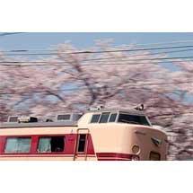 4月10日〜7月13日京都鉄道博物館で,「清水薫作品展」を開催