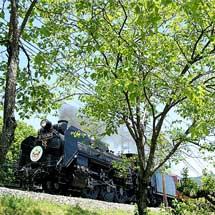 秩父鉄道,ゴールデンウィークを中心に「SLイベント」や「SL入区見学ツアー」を開催