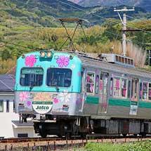 岳南電車で「芝桜電車」運転