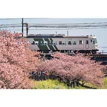 5月21日〜30日『鉄道写真展「185」』開催