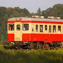 ひたちなか海浜鉄道でキハ205が運転される